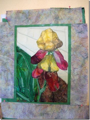 Iris with light border