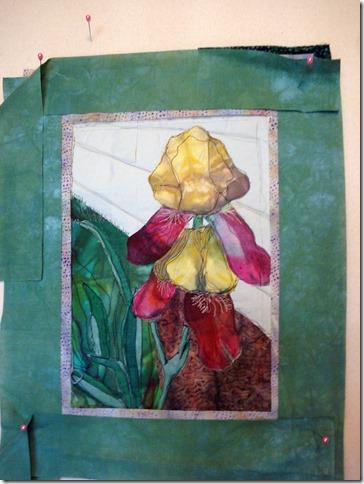 Iris with green border